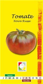 Samen der schwarzen, russischen Tomate